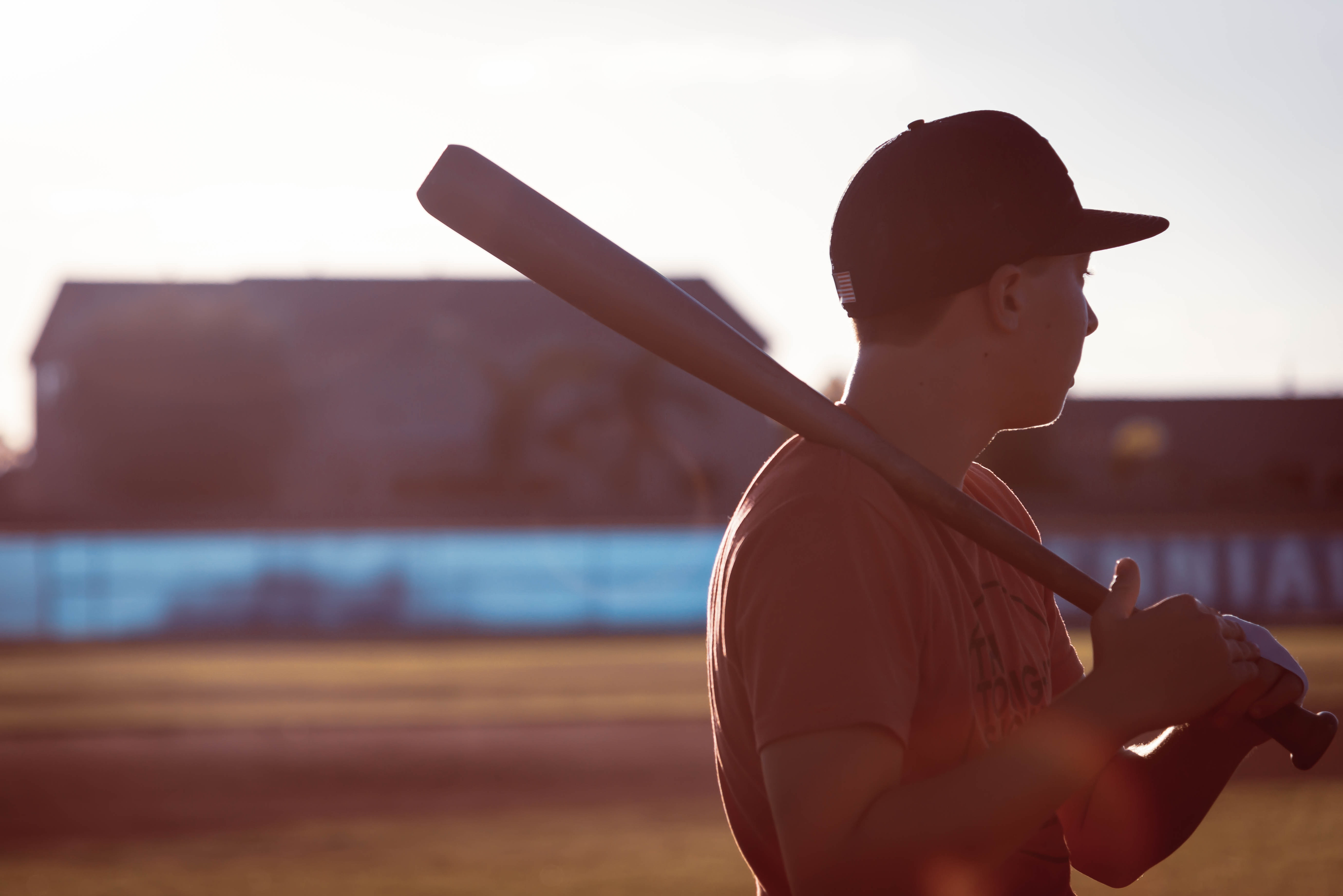 buying guide for wood baseball bats